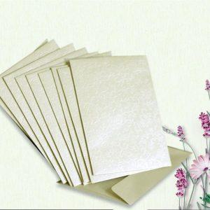 10 Ivory Applique Mini Wallet Envelopes