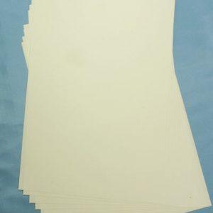 10 C6 Textured Ivory Inserts